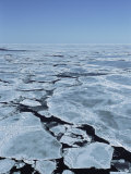 An Elevated View of Broken Pack Ice in the Gulf of St. Lawrence