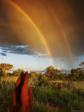 A Double Rainbow Over an Australian Grassland with Termite Mounds