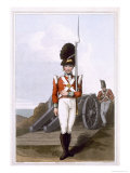 Grenadier of the First West York Militia, c.1814