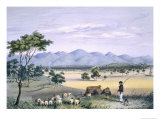 Lynedoch Valley Looking Towards the Barossa Range, South Australia Illustrated, Pub. in 1847