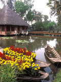Old-Fashioned Boats with Traditional Flowers, Mekong Delta, Vietnam