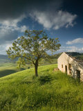 Buy Old Farmhouse, Pergusa, Enna, Sicily, Italy at AllPosters.com