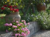 Buy Garden Detail, San Domenico Palace Hotel, Taormina, Sicily, Italy at AllPosters.com