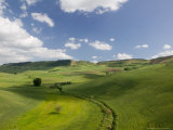 Buy Green Fields from Road S 561, Pergusa, Enna, Sicily, Italy at AllPosters.com