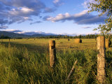 Hay Bales in Field, Whitefish, Montana, USA