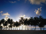 Buy Sun Setting Behind Palm Tree Lined Shore of West Coast, Cook Islands at AllPosters.com