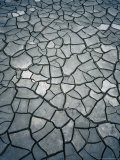 Cracked Mud, Mont St. Michel, France