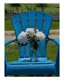 Sitting Back In My Blue Adirondack - White Peonies