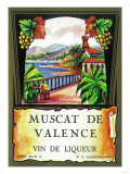 Muscat De Valence Wine Label - Europe