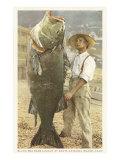 Buy Huge Black Sea Bass, Catalina, California at AllPosters.com