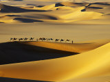 Tuareg Nomads with Camels in Sand Dunes of Sahara Desert, Arakou