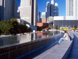 Martin Luther King Memorial Pool, Museum of Modern Art, San Francisco, California, USA