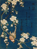 Buy Goldfinch and Cherry Tree, c.1834 at AllPosters.com
