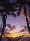 Buy Hammock on Beach, Danarau, Viti Levu, Fiji at AllPosters.com
