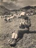 Young Shepherd Girl Sitting in a Field