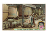 Wine Storage, Illustration