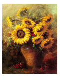 Maria's Sunflowers