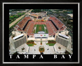 NFL Stadium - Tampa Bay, Florida