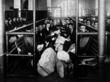 Group of Immigrants Waiting in a Holding Pen to Be Examined by Doctors, Ellis Island, 1902
