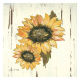 Sunflower I