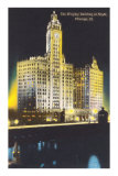 Night, Wrigley Building, Chicago, Illinois