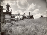 Kansas Farmer Driving Farmall Tractor as He Pulls a Manned Combine During Wheat Harvest