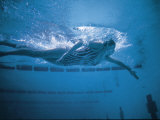 Underwater Shot of Debbie Meyer Swimming at the Summer Olympics
