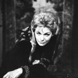 Movie Actress Kim Novak with Siamese Cat During Filming of
