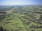 Aerial View of Stream Patterns, Grasslands, and Riparian Growth East of Wellfleet, Nebraska, USA