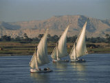 Three Feluccas Sailing on the River Nile, Egypt, North Africa, Africa