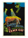 The Black Cat, Boris Karloff, Harry Cording, Jacqueline Wells, Bela Lugosi, 1934