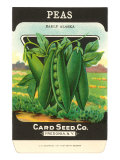 Pea Seed Packet
