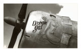 Nose Art, Dream Gal Pin-Up