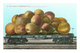 Giant California Plums on Flatbed