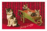 Birthday Greetings, Cats with Wheelbarrow