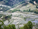 Flooded Rice Terraces, Mengpin Village, Yuanyang County, Yunnan, China