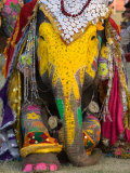 Buy Elephant Festival, Jaipur, Rajasthan, India at AllPosters.com