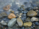 Rocks at edge of river, Eagle Falls, Snohomish County, Washington State, USA