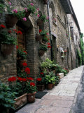 Flower Pots at Door, Assisi, Umbria, Italy