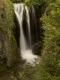 Roughlock Falls in Spearfish Canyon, Black Hills National Forest