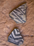 Prehistoric Anasazi Pottery Sherds in Grand Gulch Primitive Area