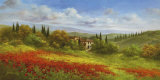 Tuscany Beauty I