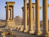 Spectacular Ruined City of Palmyra, Syria
