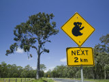Queensland, Fraser Coast, Maryborough, Koala Crossing Sign on the Bruce Highway, Australia