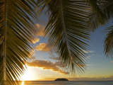 South Pacific, Fiji, Kadavu, Sunset Through Plams from the Beach on Dravuni Island
