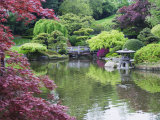 Japanese Garden, Brooklyn Botanical Garden, Brooklyn