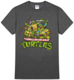 Teenage Mutant Ninja Turtles - TMNT Group (Slim Fit)