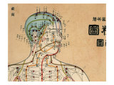 Buy Acupuncture Points and Meridians of Human Body at AllPosters.com