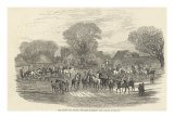 The Queen's Stag Hounds: The Meet, Aylesbury Vale, from 'The Illustrated London News'