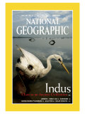 Cover of the June, 2000 Issue of National Geographic Magazine